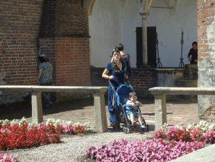 Certosa di Pavia.