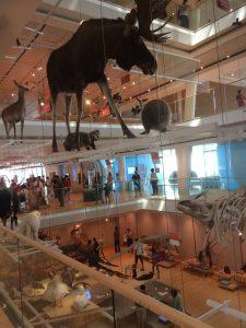 MUSE museo delle scienze di Trento