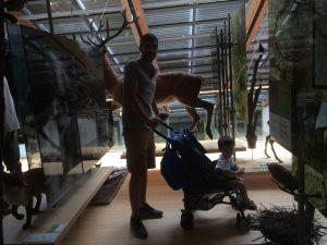 MUSE Trento musei per bambini