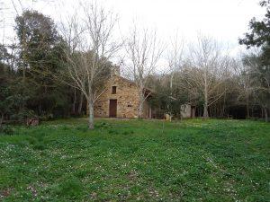 Santa Maria Angiargia Collinas