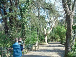 visitare il Bioparco Roma