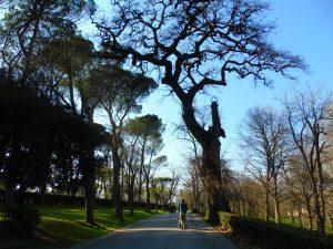 Parco di Villa Borghese a Roma.