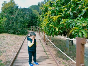 Lago Baratz per bambini