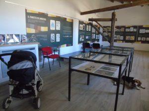 Museo del Fumetto a Norbello
