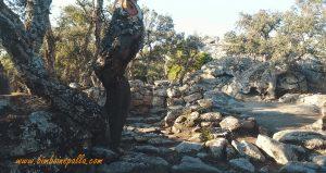 sito archeologico di Su Romanzesu a Bitti
