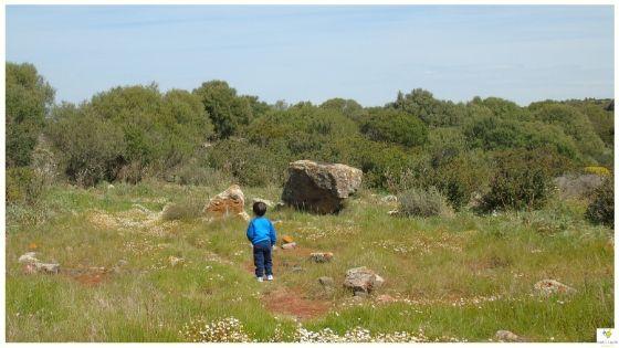 Primavera in Sardegna idee per la famiglia