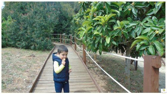 Primavera in Sardegna con i bambini