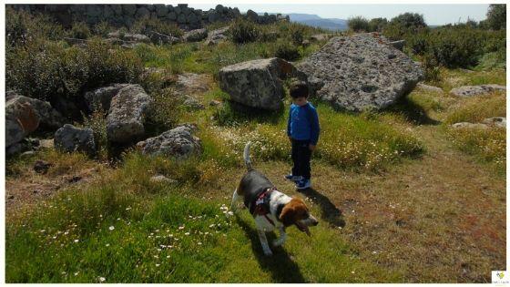 Primavera in Sardegna idee e consigli