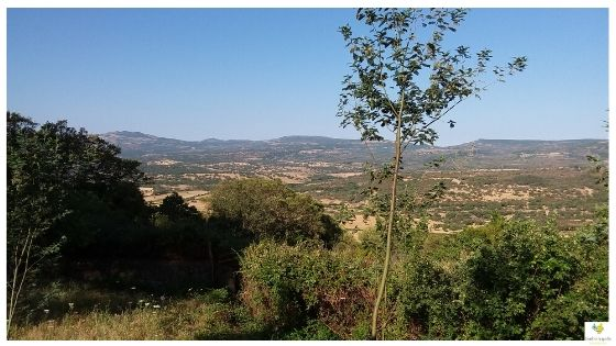 Villanova vacanze in Sardegna dopo il Coronavirus