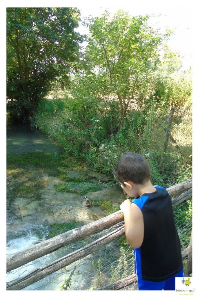 Fonti del Clitunno parchi Umbria