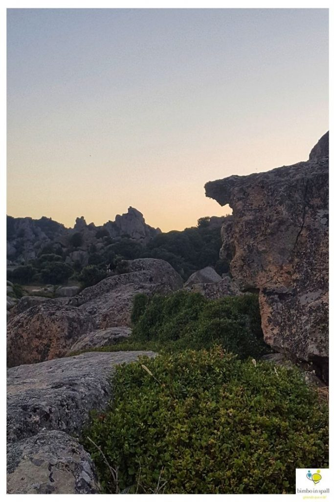 Monti Fraili escursione nottura trekking