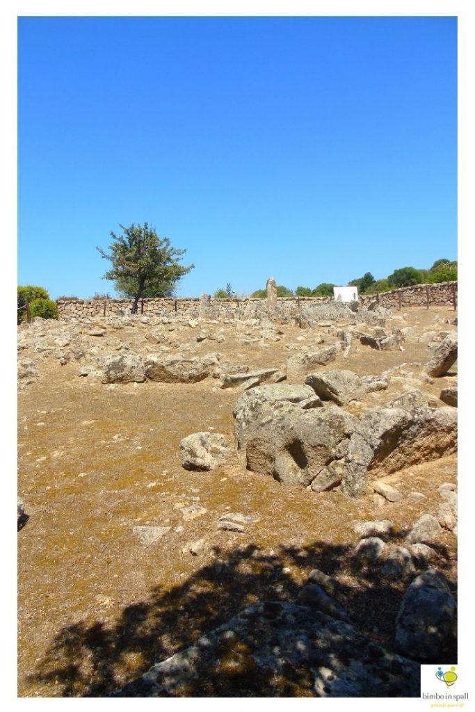 Necropoli di Li Muri ad Arzachena
