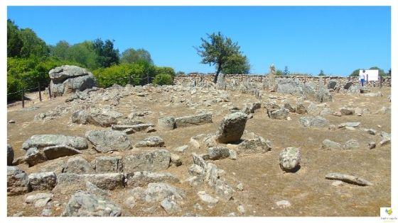 Circoli Megalitici di Li Muri archeologia in Sardegna