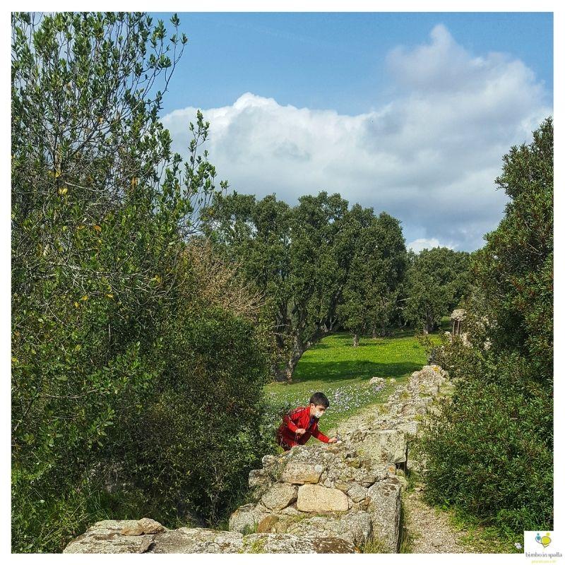 #larcheologiaaibambini in Sardegna