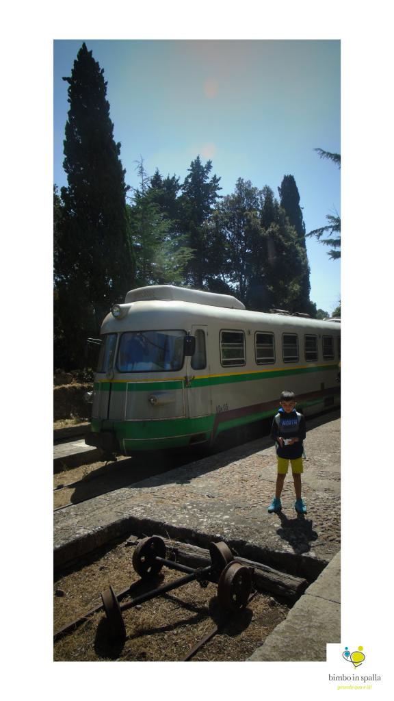 Trenino Verde Mandas Laconi avventura a misura di bambino